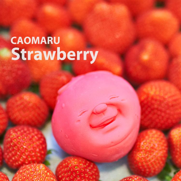 かおまる ふるーつ フルーツ  いちご イチゴ  アッシュコンセプト カオマルくん ストレス解消 望月商店 フルーツサンド