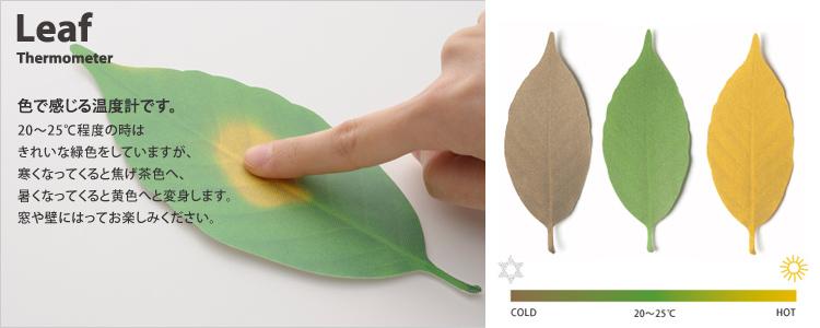 Leaf リーフ +d
